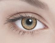 Адріа контактні лінзи кольорові Елегант коричневий /8,6/0,0 D 2шт.