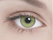 Адриа линзы контактные цветные Гламур Пюр Голд (чистое золото) /8,6/0,0D 2шт.