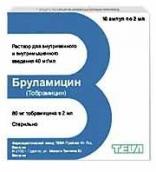 Бруламицин 80мг/2мл №10 амп.